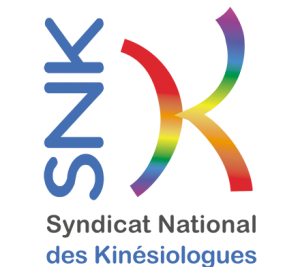 snk-300x267